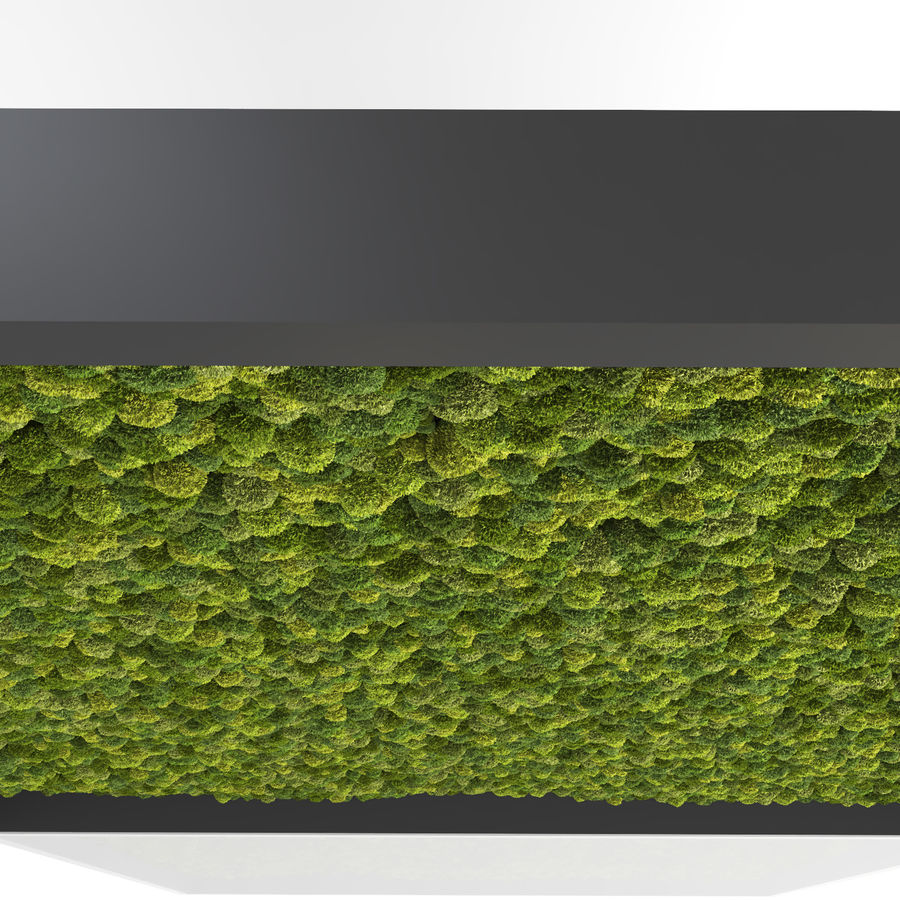 Moss Wall (Scatterable) royalty-free 3d model - Preview no. 9