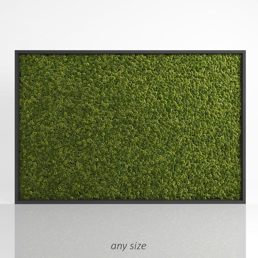 Moss Wall (Scatterable) royalty-free 3d model - Preview no. 2