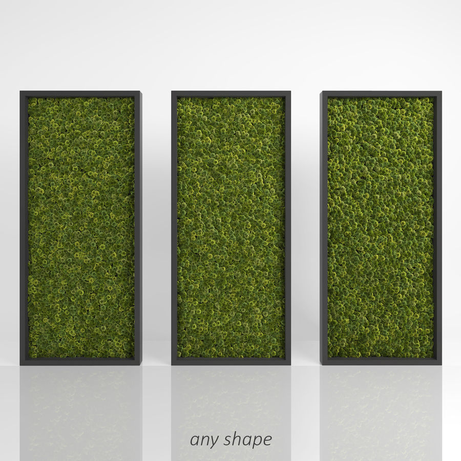 Moss Wall (Scatterable) royalty-free 3d model - Preview no. 4