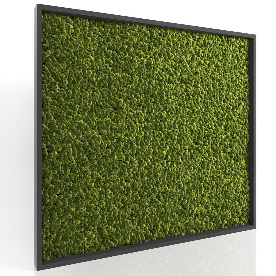 Moss Wall (Scatterable) royalty-free 3d model - Preview no. 3
