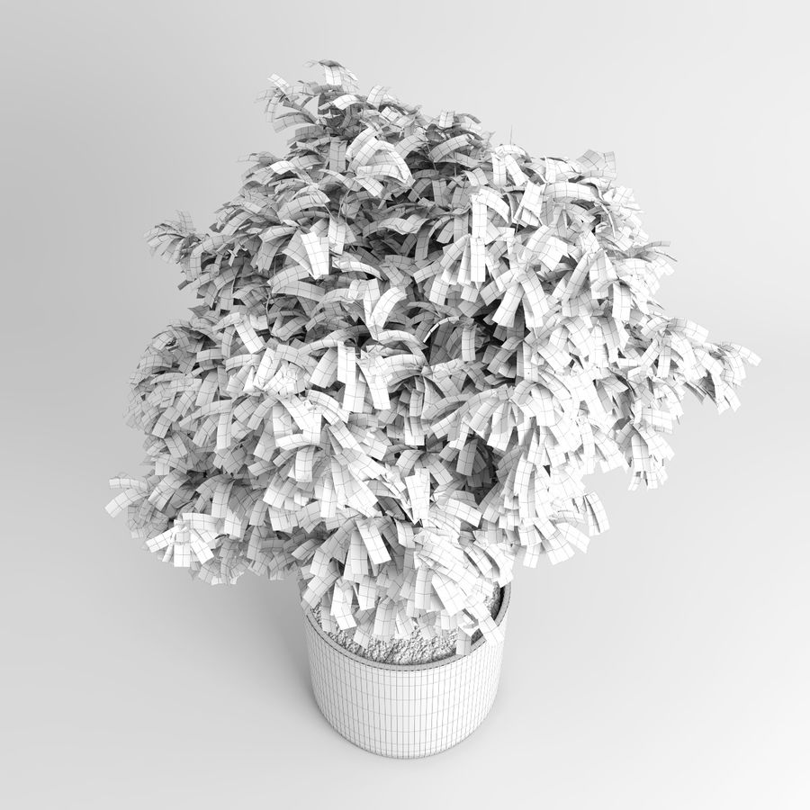 House Plants (+GrowFX) royalty-free 3d model - Preview no. 12