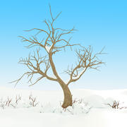 Snow Tree Winter 3d model