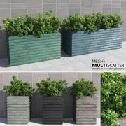 Shrubs in Wooden Planters 3d model