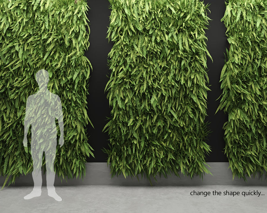 Scatterable Fern Wall (Leptosporangiate) royalty-free 3d model - Preview no. 2