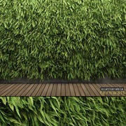 Scatterable Fern Wall (Leptosporangiate) 3d model