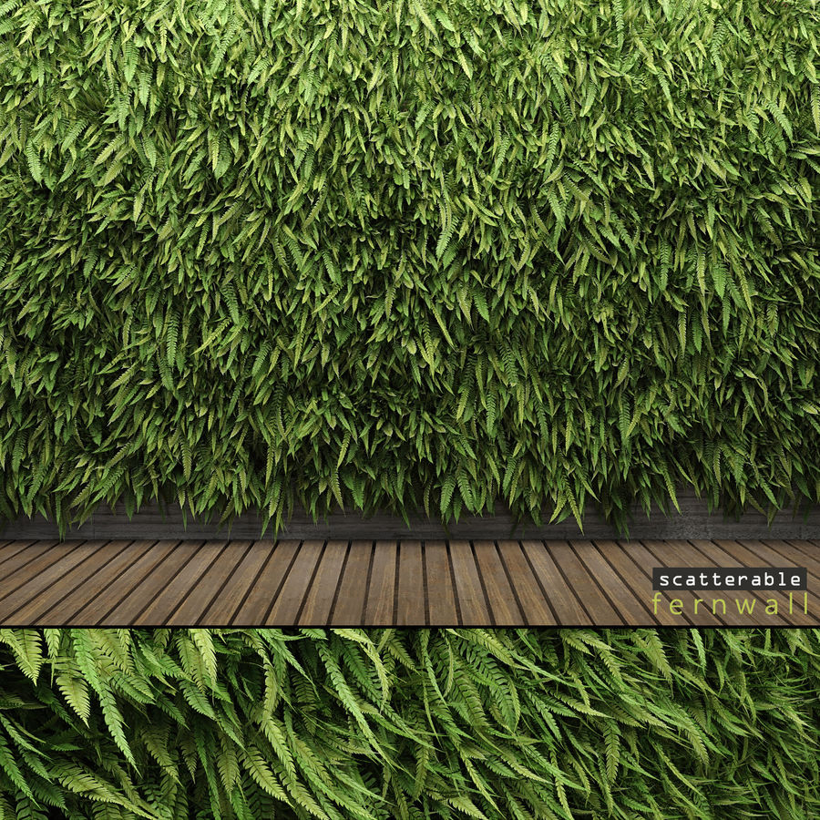 Scatterable Fern Wall (Leptosporangiate) royalty-free 3d model - Preview no. 1