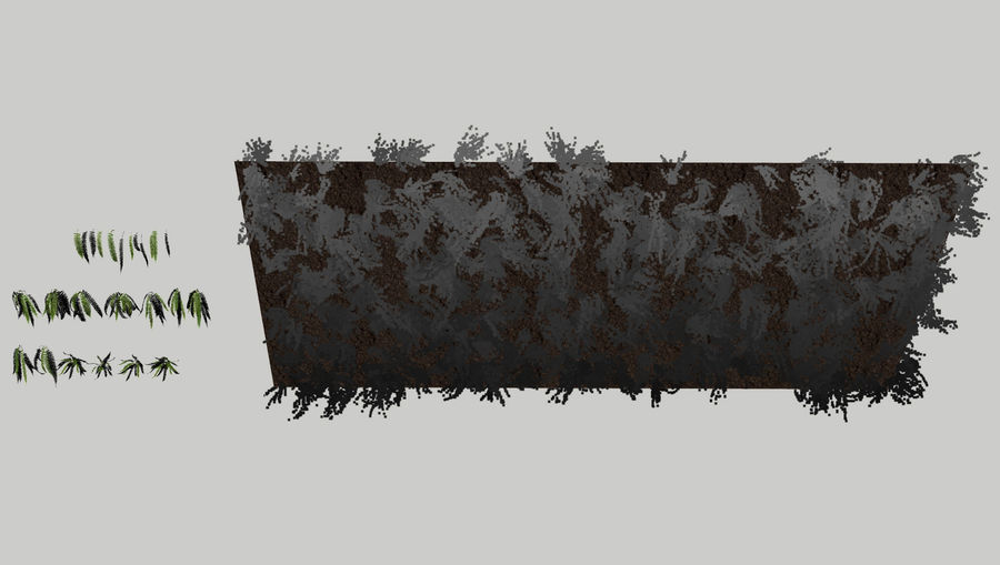 Scatterable Fern Wall (Leptosporangiate) royalty-free 3d model - Preview no. 8