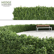 Scatterable Hedge 3d model