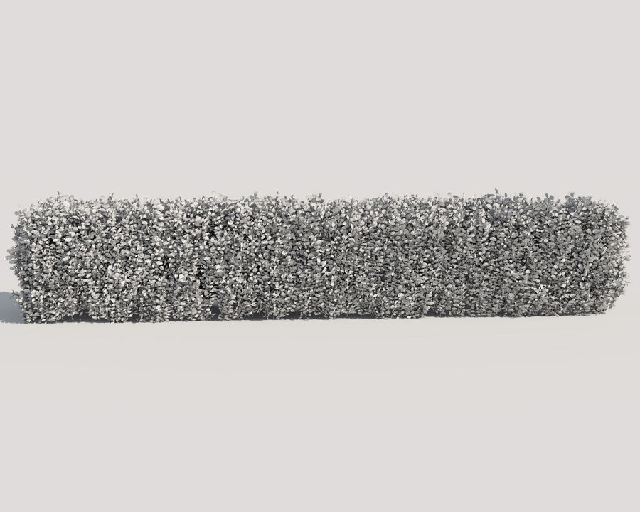 Scatterable Hedge royalty-free 3d model - Preview no. 13