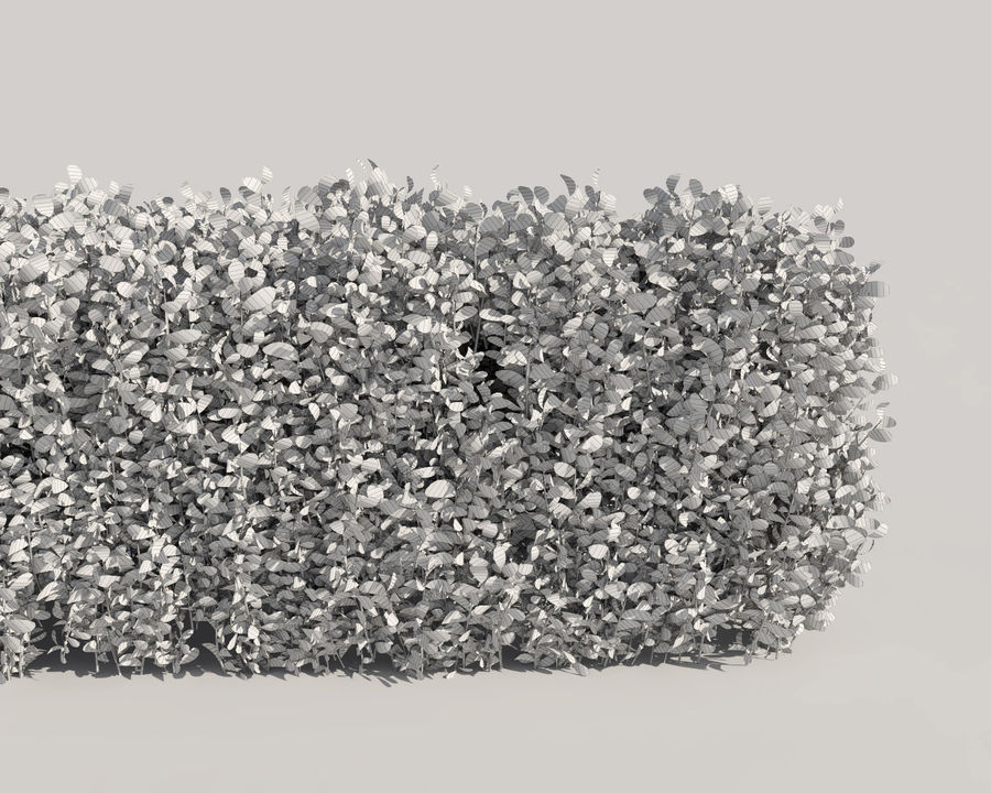 Scatterable Hedge royalty-free 3d model - Preview no. 12