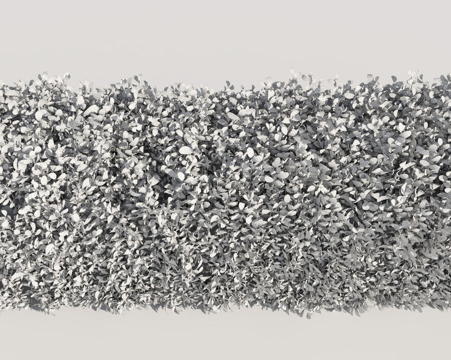 Scatterable Hedge royalty-free 3d model - Preview no. 14