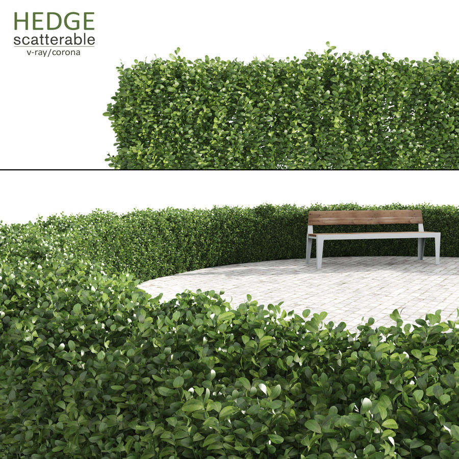 Scatterable Hedge royalty-free 3d model - Preview no. 1