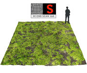 Forest ground 16K Ultra HD (2) 3d model