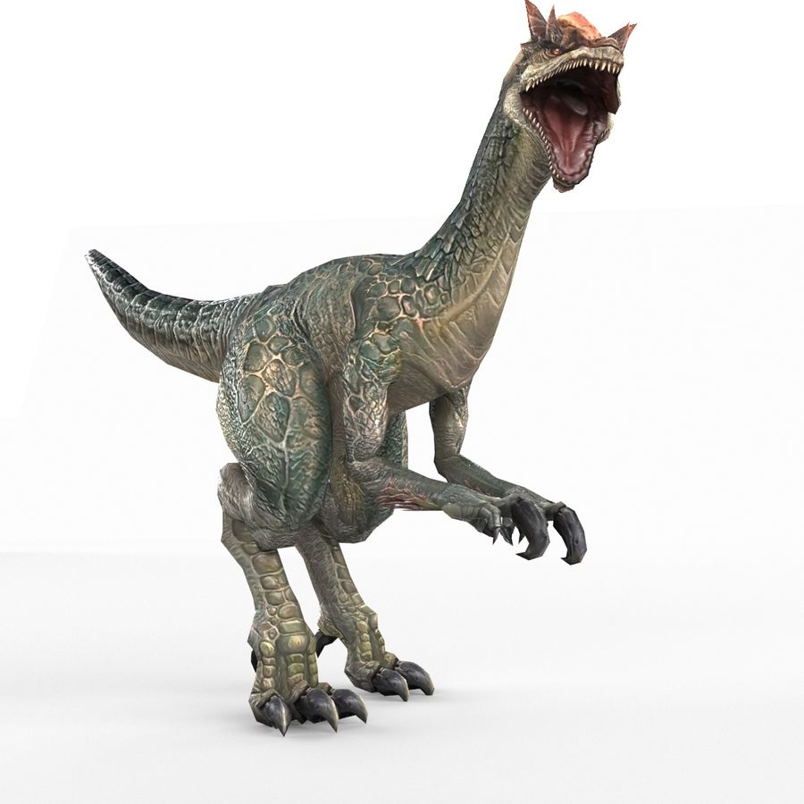 Velociraptor royalty-free 3d model - Preview no. 6