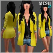 Blazer with Shirt and Shorts 3d model