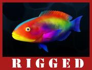 Fish_Rigged 3d model