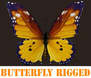 Butterfly_Rigged 3d model