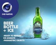 啤酒瓶+冰 3d model