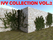 Ivy Collection Vol.2 3d model