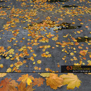 Autumn Leaves (Scatterable) 3d model