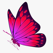 Farfalla viola 3d model