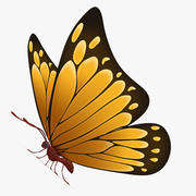 Vlinder Sinaasappel 3d model
