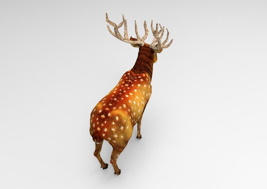 サンタ鹿のそり royalty-free 3d model - Preview no. 22