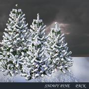 雪に覆われた松 3d model
