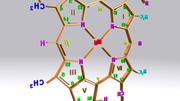Chlorophyll C structure 3d model