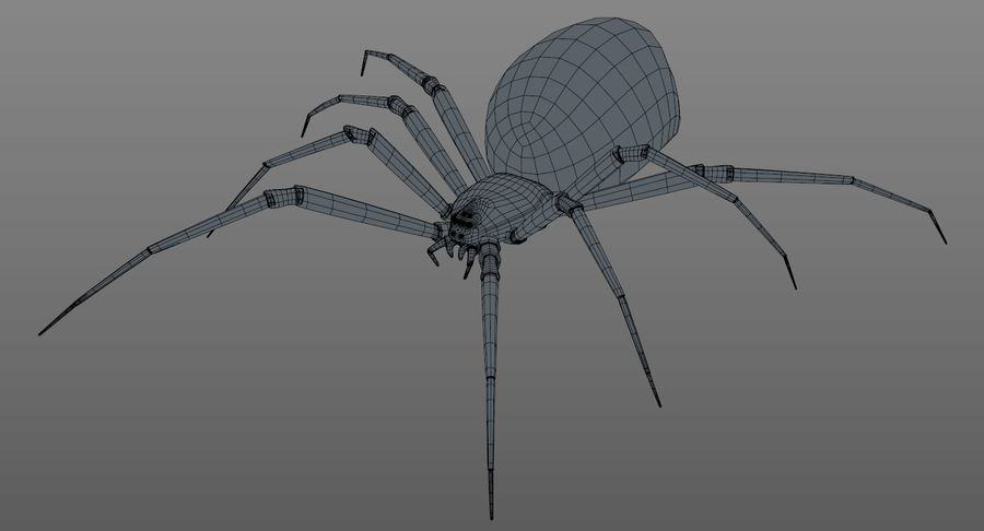 Araña Viuda Negra Realista royalty-free modelo 3d - Preview no. 10