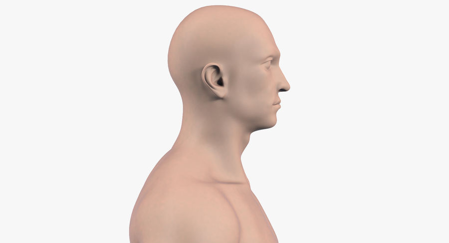 Человек 001 royalty-free 3d model - Preview no. 7