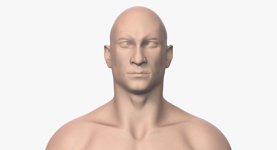 Человек 001 royalty-free 3d model - Preview no. 6