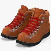 Boots Danner 3d model