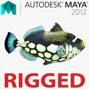 Рыба-клоун-триггер, подстроенная под майя 3d model