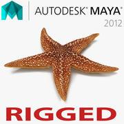 Mayaに接続されたStarfish 2 3d model