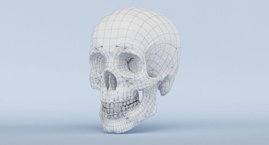 Anatomie du crâne royalty-free 3d model - Preview no. 49