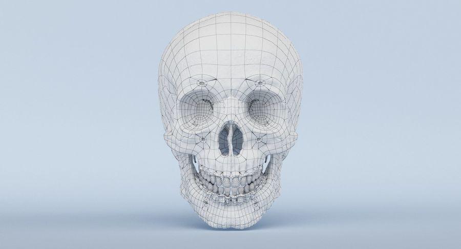 Anatomie du crâne royalty-free 3d model - Preview no. 38