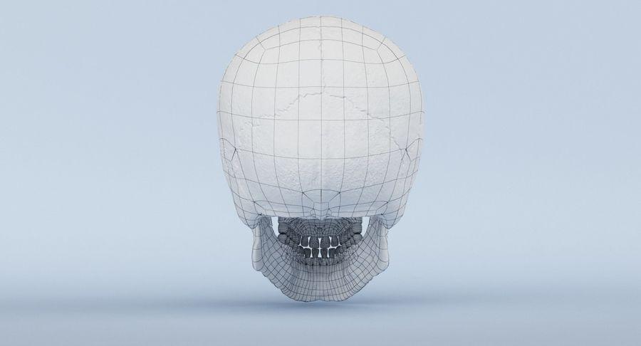 Anatomie du crâne royalty-free 3d model - Preview no. 44