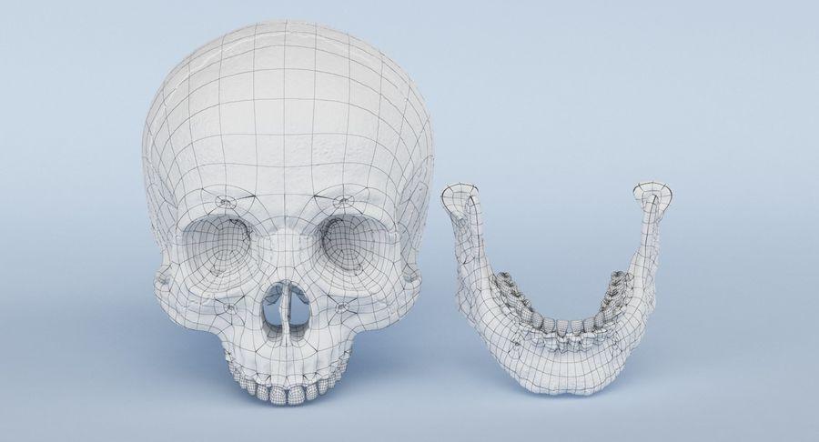 Anatomie du crâne royalty-free 3d model - Preview no. 28