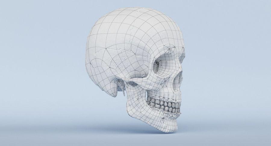 Anatomie du crâne royalty-free 3d model - Preview no. 40
