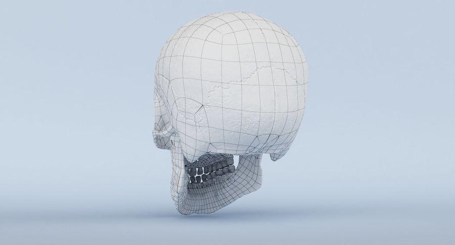 Anatomie du crâne royalty-free 3d model - Preview no. 45