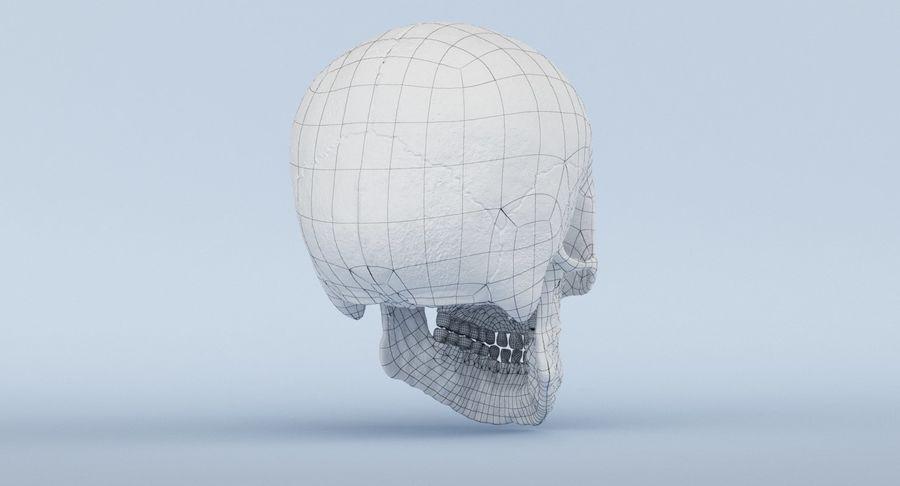 Anatomie du crâne royalty-free 3d model - Preview no. 43