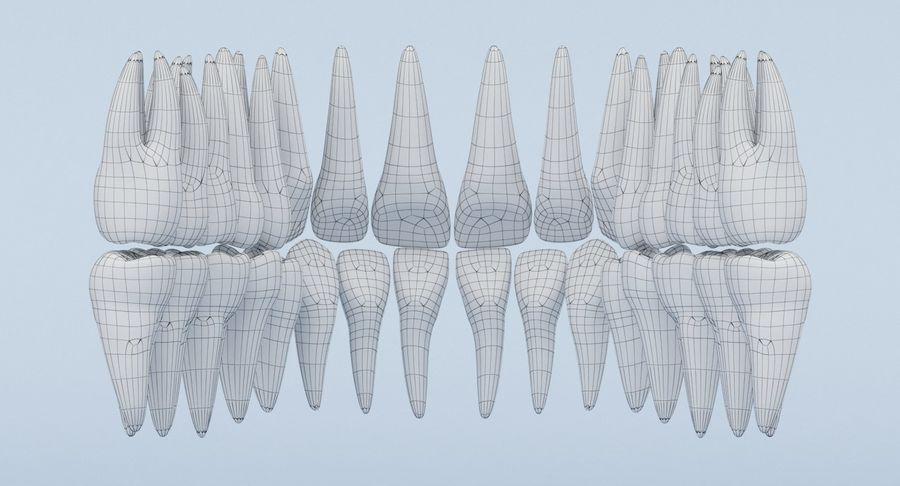 Anatomie du crâne royalty-free 3d model - Preview no. 33