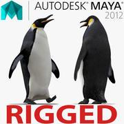Penguin Rigged for Maya 3d model