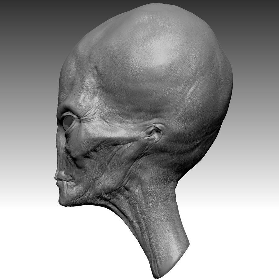 UFO Alien Head royalty-free 3d model - Preview no. 11
