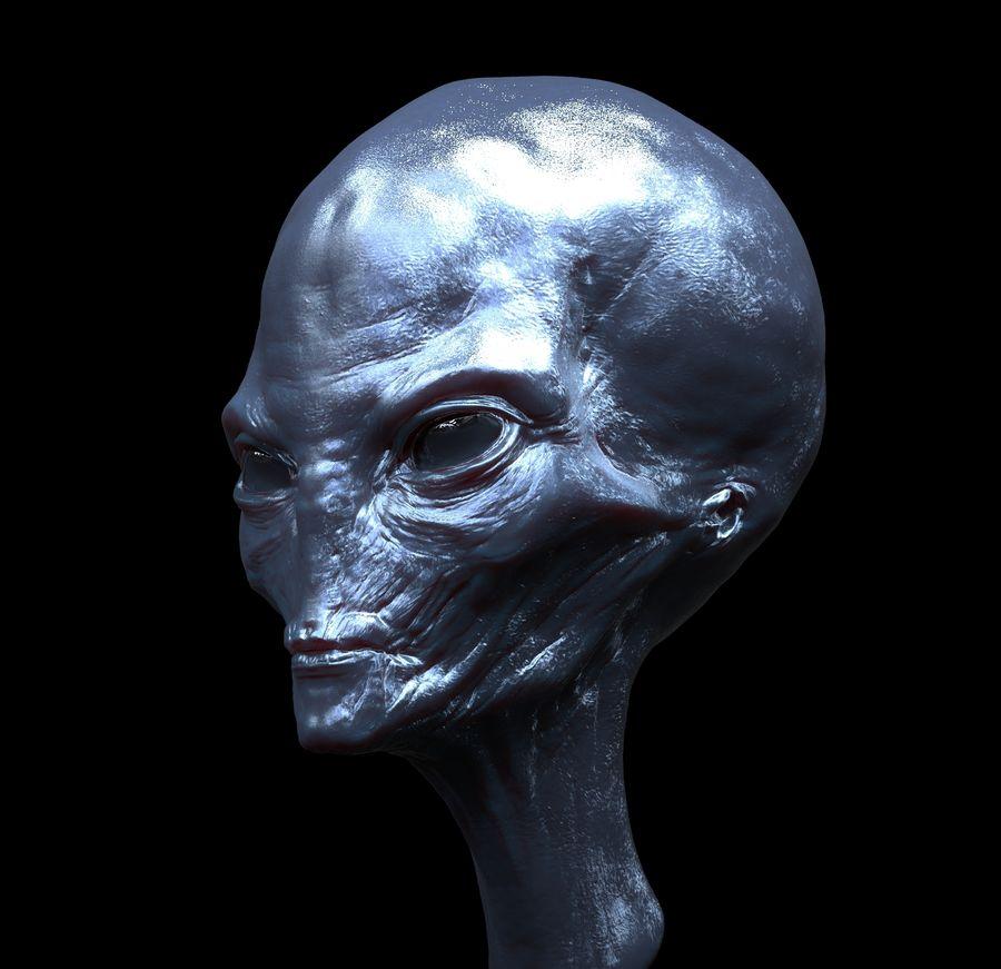 UFO Alien Head royalty-free 3d model - Preview no. 1