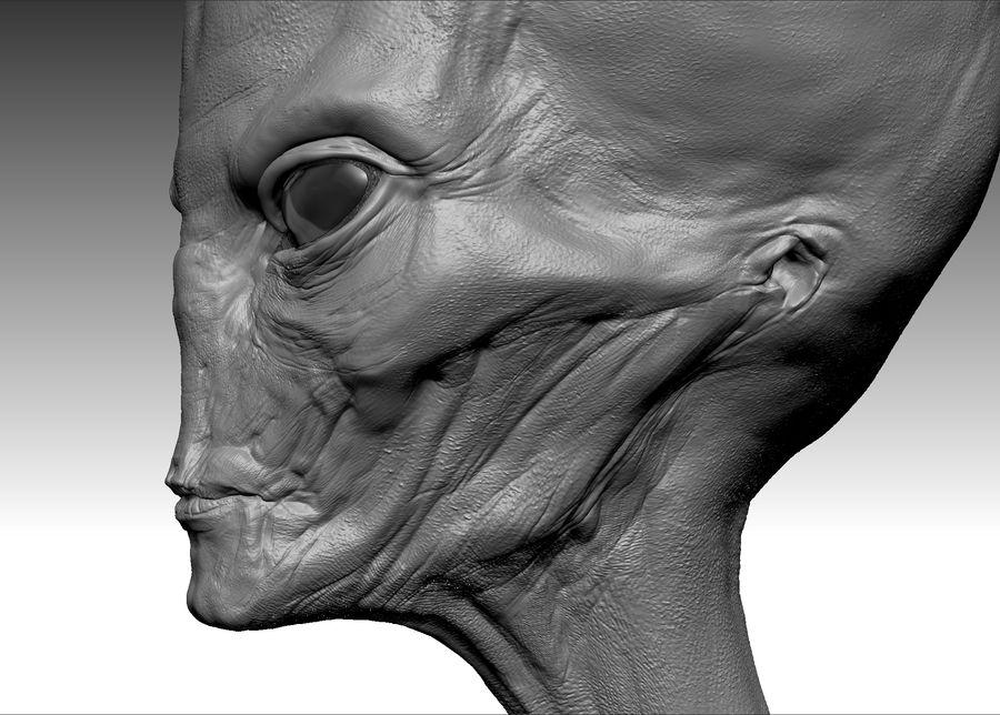 UFO Alien Head royalty-free 3d model - Preview no. 6