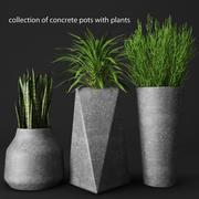 potted plants 3d model