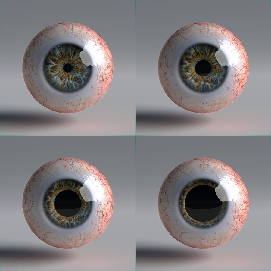 인간의 눈 royalty-free 3d model - Preview no. 12
