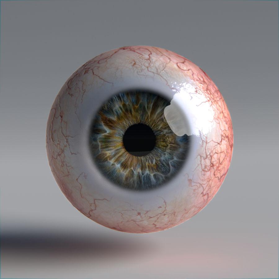 인간의 눈 royalty-free 3d model - Preview no. 9